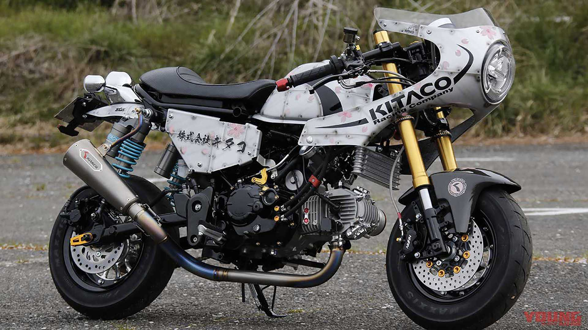 Can A Café Racer Be Adorable? If It's A Monkey, It Totally Can!
