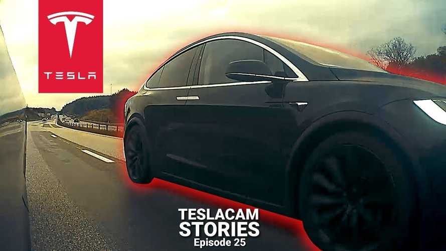 Watch Tesla Vs Tesla Road Rage, Scooter Crash, Close Calls, Moose & More