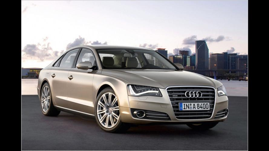 Audis Zukunftspläne: Hybrid-Q5 kommt 2011 auf den Markt