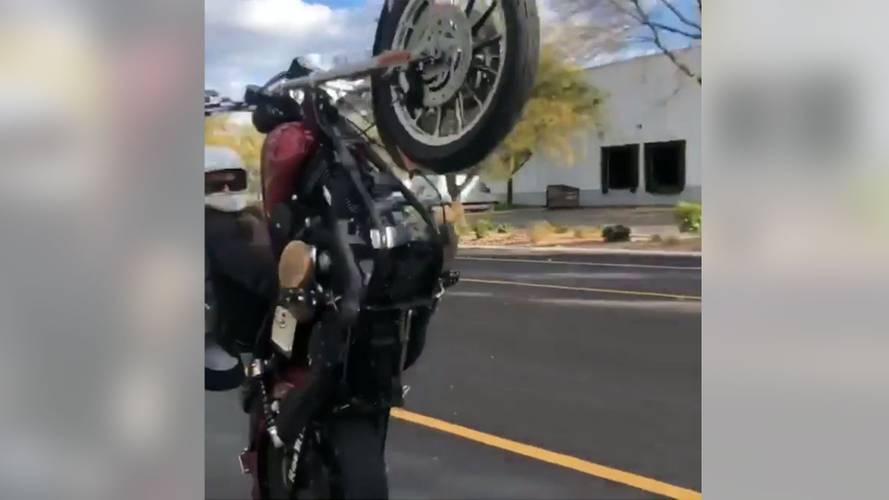 Watch This Wheelie Go Tragically, Hilariously Wrong
