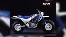 honda tr200 fat cat dirt bike