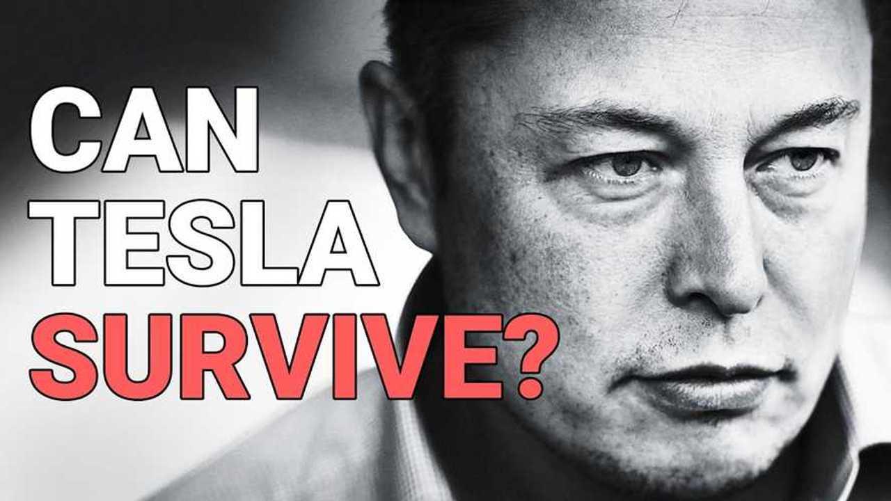 elon pézsma Tesla túlélni