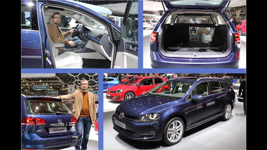 Sitzprobe: VW Golf Variant