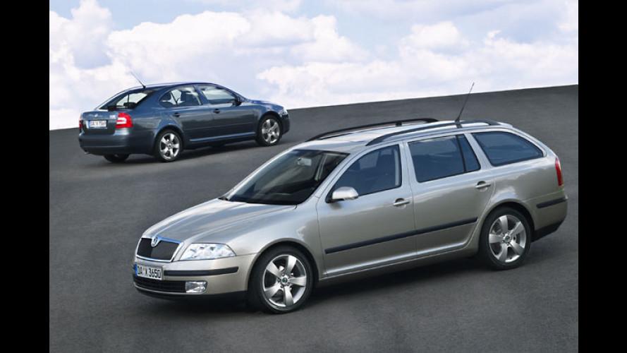 Skoda Octavia: Neues von Limousine und Kombi