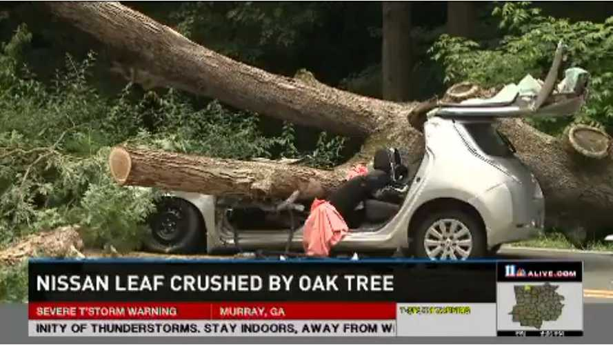 Nissan LEAF Crushed By Mighty Oak - Driver Okay - Video
