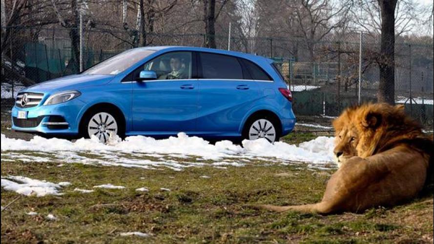 """Mercedes inventa il """"Safari elettrico"""""""