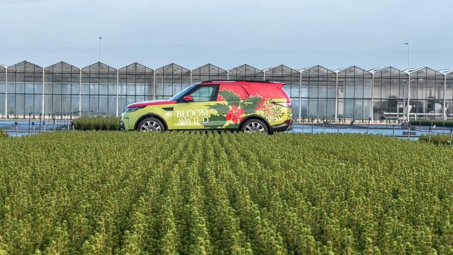 Land Rover Discovery versión comercial