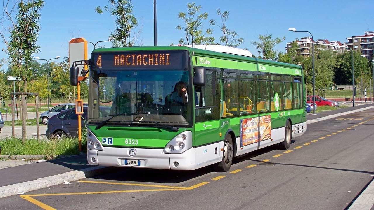 Autobus verde