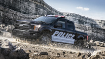 ford f150 expedition police