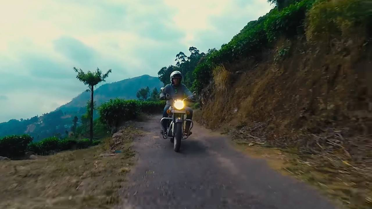 Video: The Bear India Tour