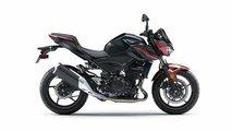 2019 Kawasaki Z400 ABS