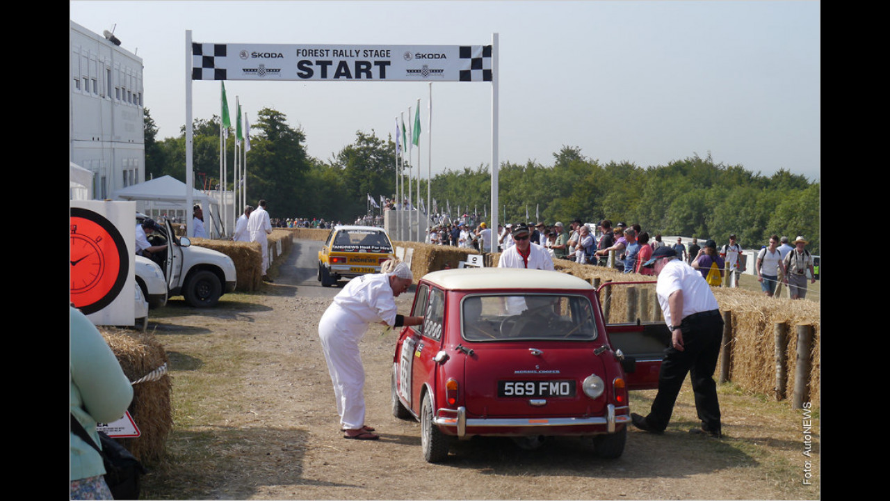 Forest Rally Stage