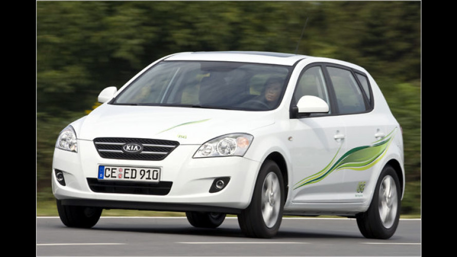Start-Stopp-Automatik im Kia Cee'd für 300 Euro Aufpreis
