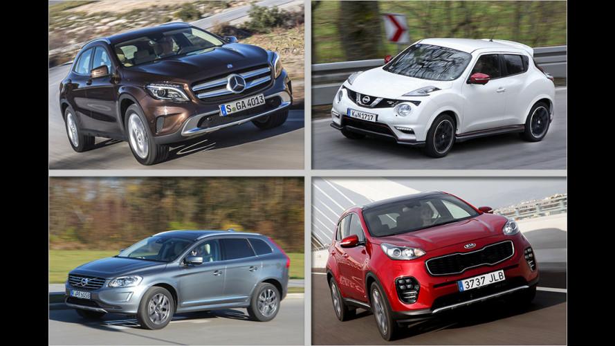 Über 30 aktuelle SUVs im Test