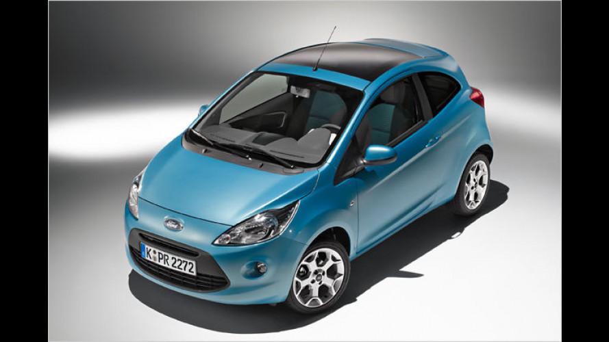 Ford Ka: Kleiner Kölner für kleines Geld