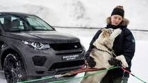 Dog power v horsepower Land Rover Discovery Sport