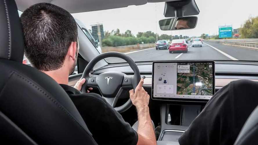 Foto – Tesla Model Y e Model 3, cosa le rende speciali