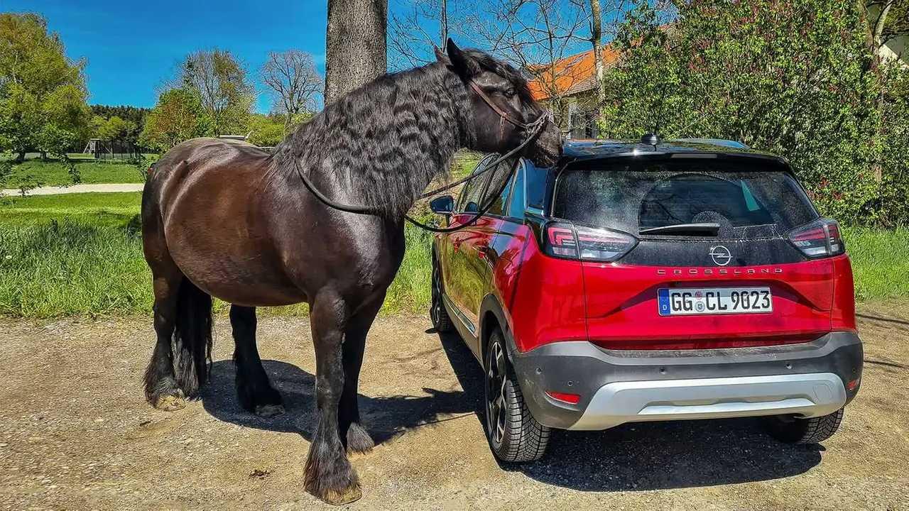 Der Opel Crossland im Alltagstest