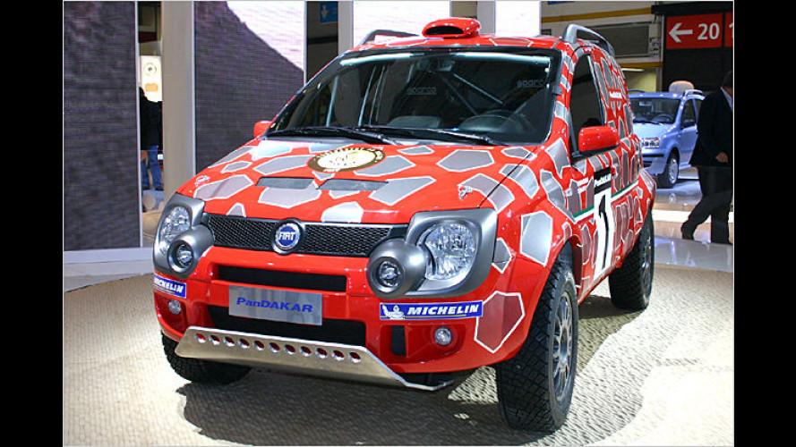 Fiat in Bologna: Sportliche Modelle und Concept-Cars