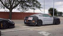 2019 Mustang Shelby GT350 casus fotoğrafı