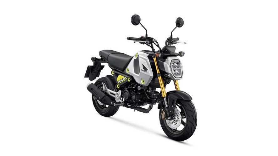 Honda MSX 125 Grom 2021, Euro 5 e look inconfondibile