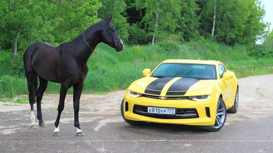 Если бы Бамблби родился в Европе. Chevrolet Camaro 2.0