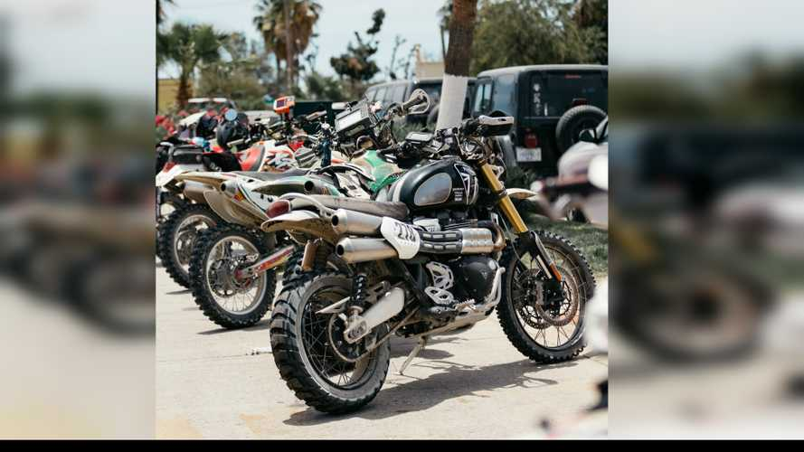 Triumph Scrambler 1200 XE's Magnificent Rally Finish