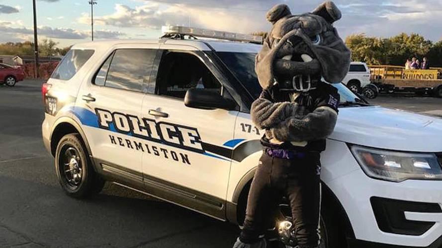 Oregon Police Troll Chase Suspect via Facebook