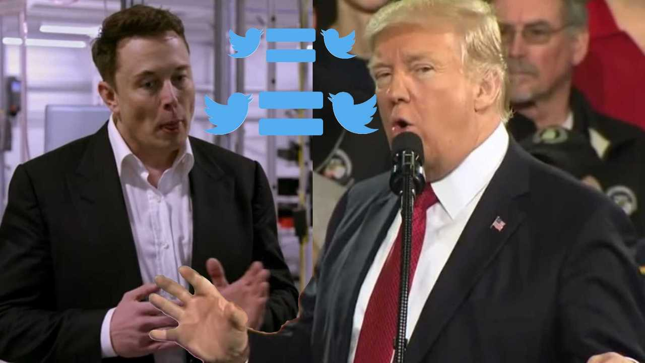 COVID-19 Shows Musk And Trump Have More In Common Than Most Admit