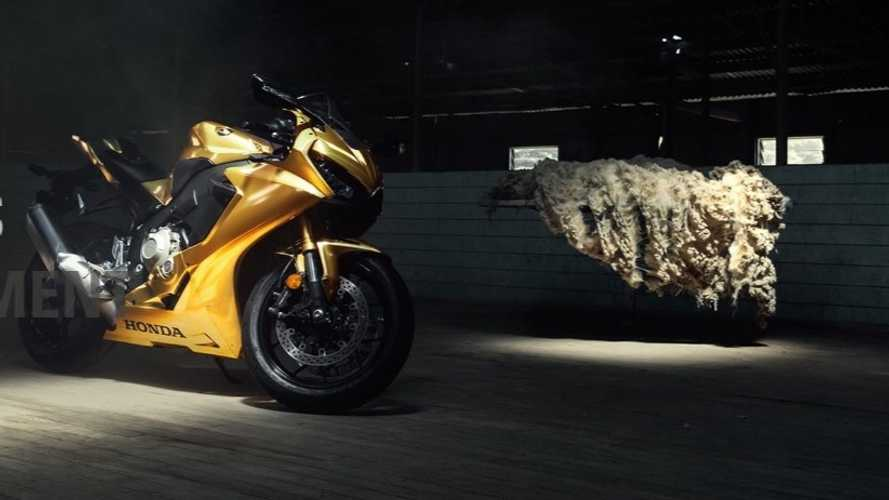 Golden Fireblade