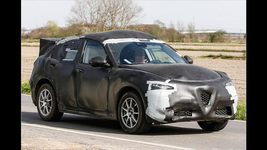 Der Stelvio: Das nächste neue SUV