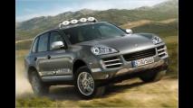 Rallye-Porsche