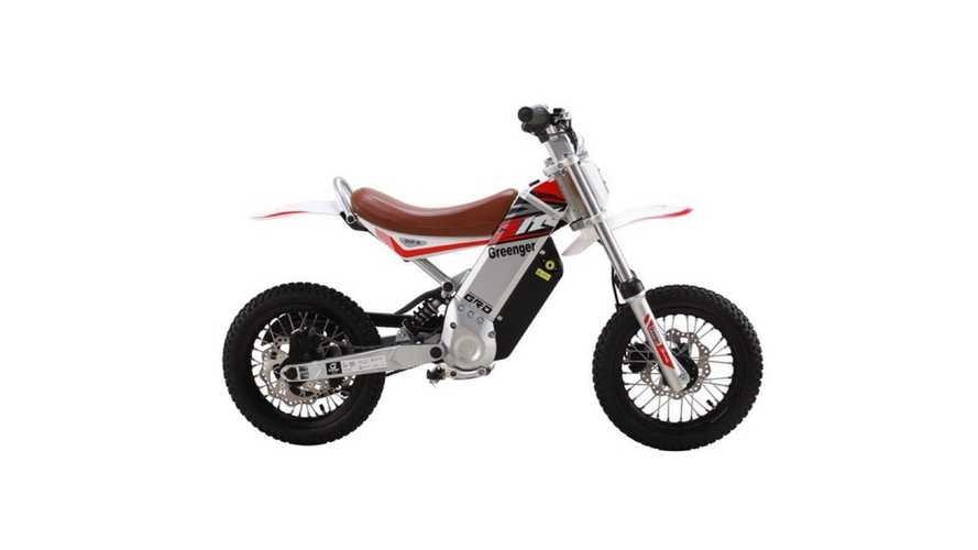 Start Them Young With The Electric Greenger G12