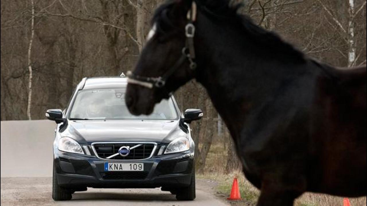 [Copertina] - Tra i nuovi sistemi di sicurezza Volvo c'è anche il monitoraggio incroci