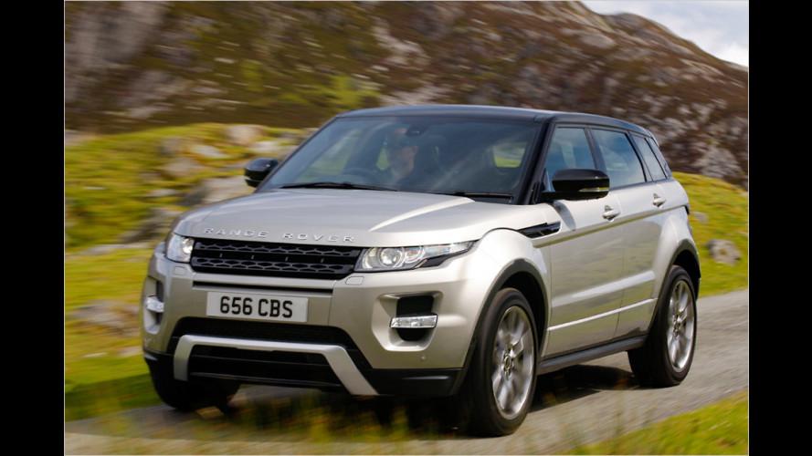 Range Rover Evoque: Starker Typ nicht nur fürs Gelände
