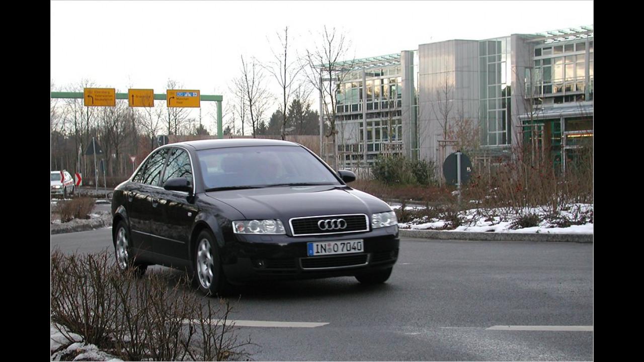 Ohne Platzierung: Kreisverkehr-Anfänger