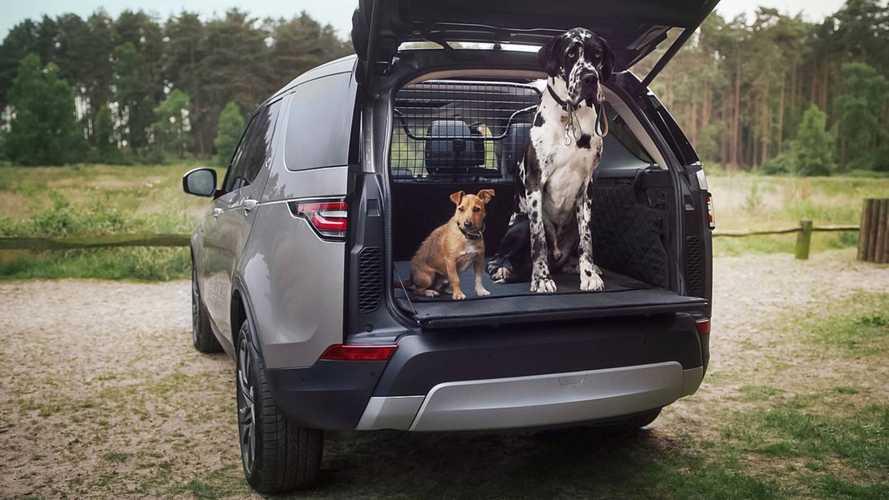 Land Rover, anche Fido viaggia nel lusso