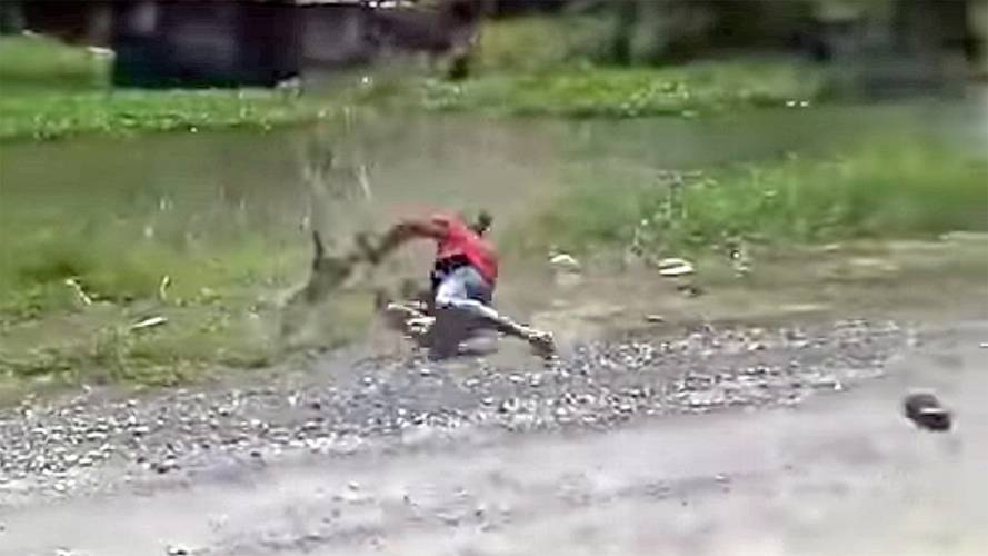 Watch Man Fight a Monkey for His Motorcycle