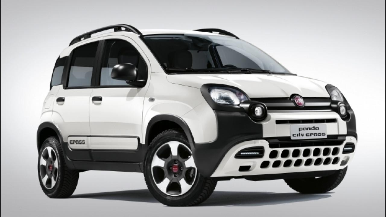 [Copertina] - Fiat Panda City Cross e 4x4, novità da giungla urbana