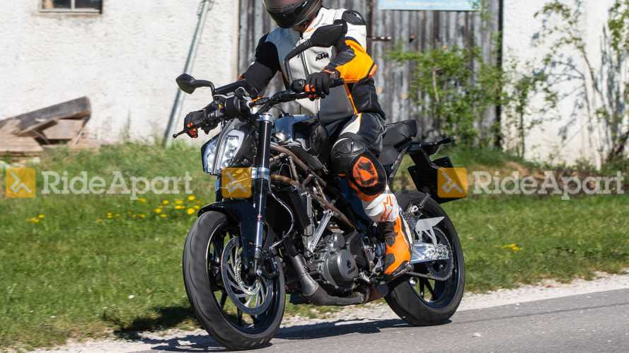 2021 KTM 390 Duke Spy Shots