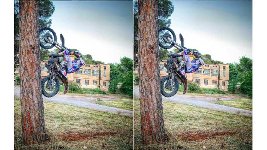 Stunt Rider Likes To Climb Trees With His Husqvarna
