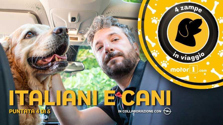I cani e gli italiani, come stare bene assieme in auto e non