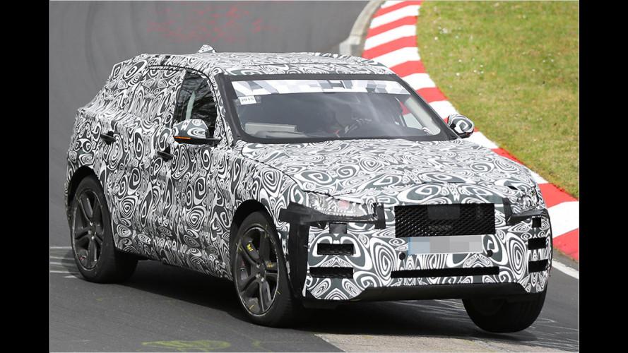 Jaguar F-Pace: So wird das SUV
