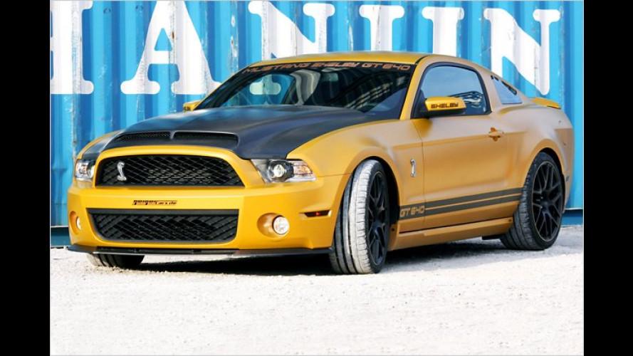 Goldene Superschlange: Ford Mustang Shelby von Geiger