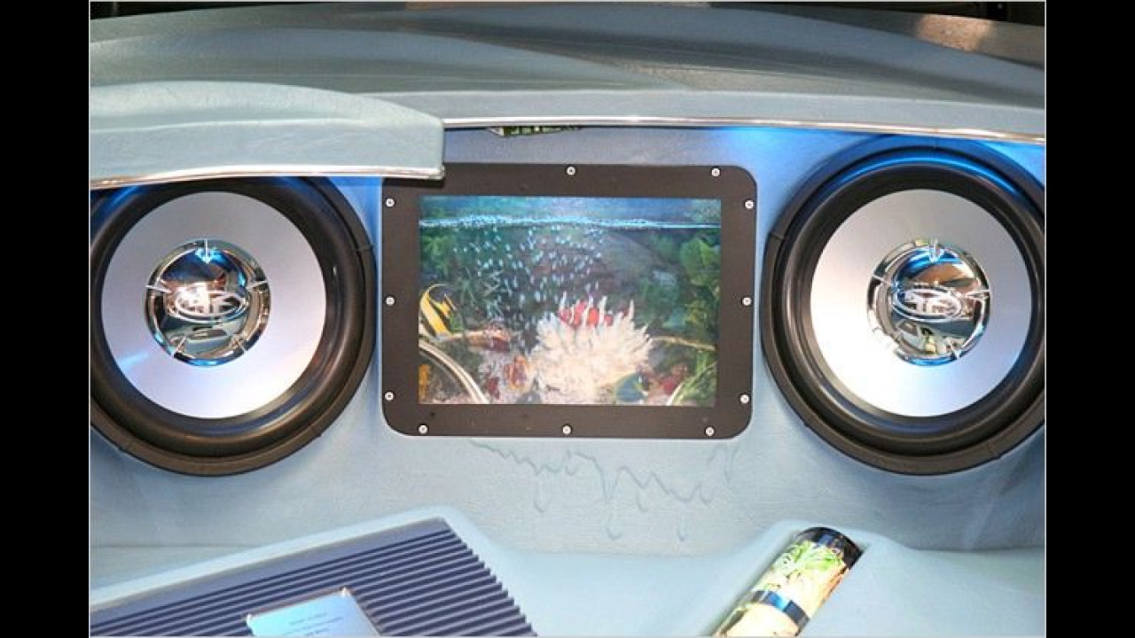 Hier macht die Stauraum-Angabe in Liter mal Sinn: Ein beruhigendes Aquarium im Kofferraum