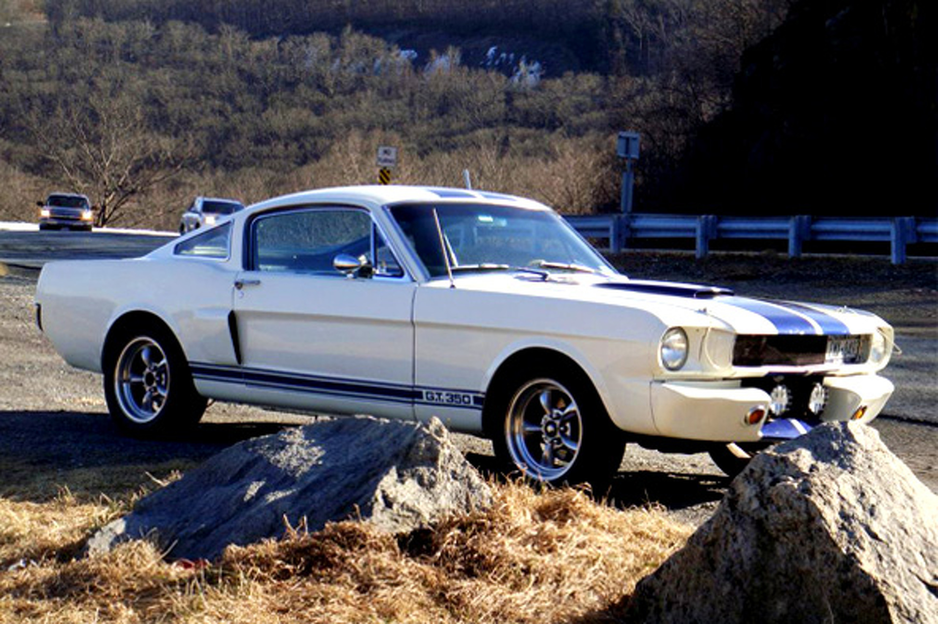 Bold school 1965 ford mustang shelby gt350