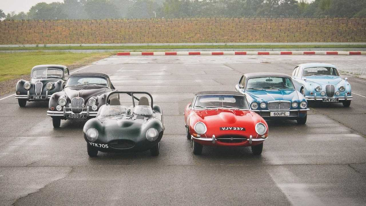 How you can get to drive classic Jaguars – even a D-type!