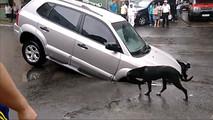 SUV In Sinkhole