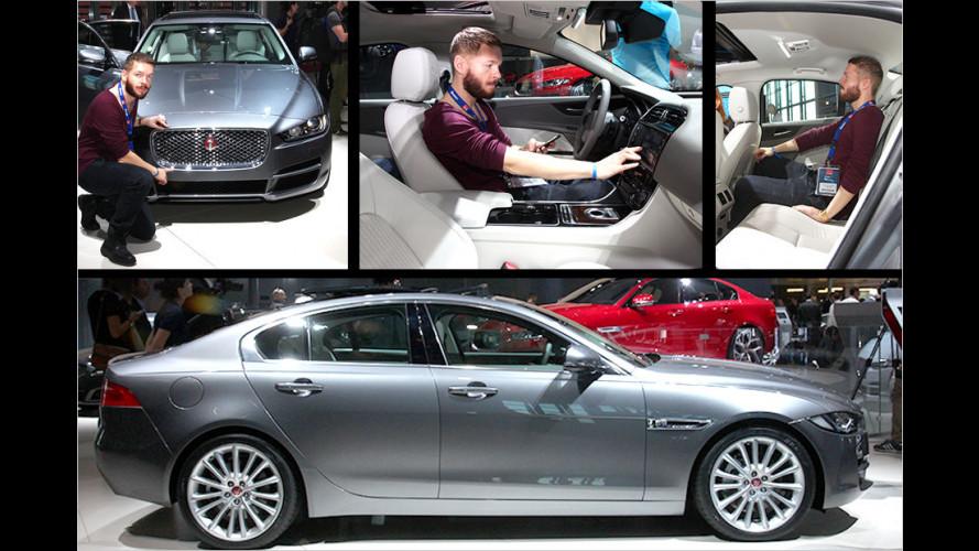 Jaguar XE: So fühlt sich der Baby-Jag an