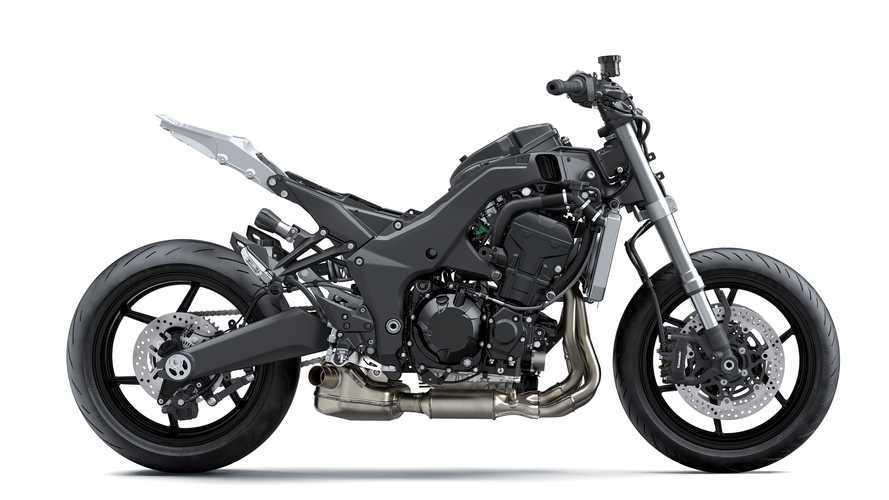 2020 Kawasaki Ninja 1000 Slides